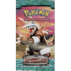 Wrap Pokemon - Ex Gardiens...